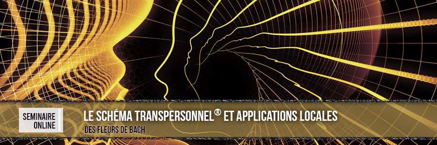 Séminaire. Le Schéma Transpersonnel® et Applications Locales. France